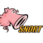 What is Snort and why use it?