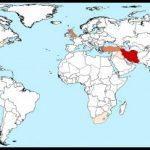 از حملات سایبری اخیر حکومت علیه مردم ایران چه میدانیم؟